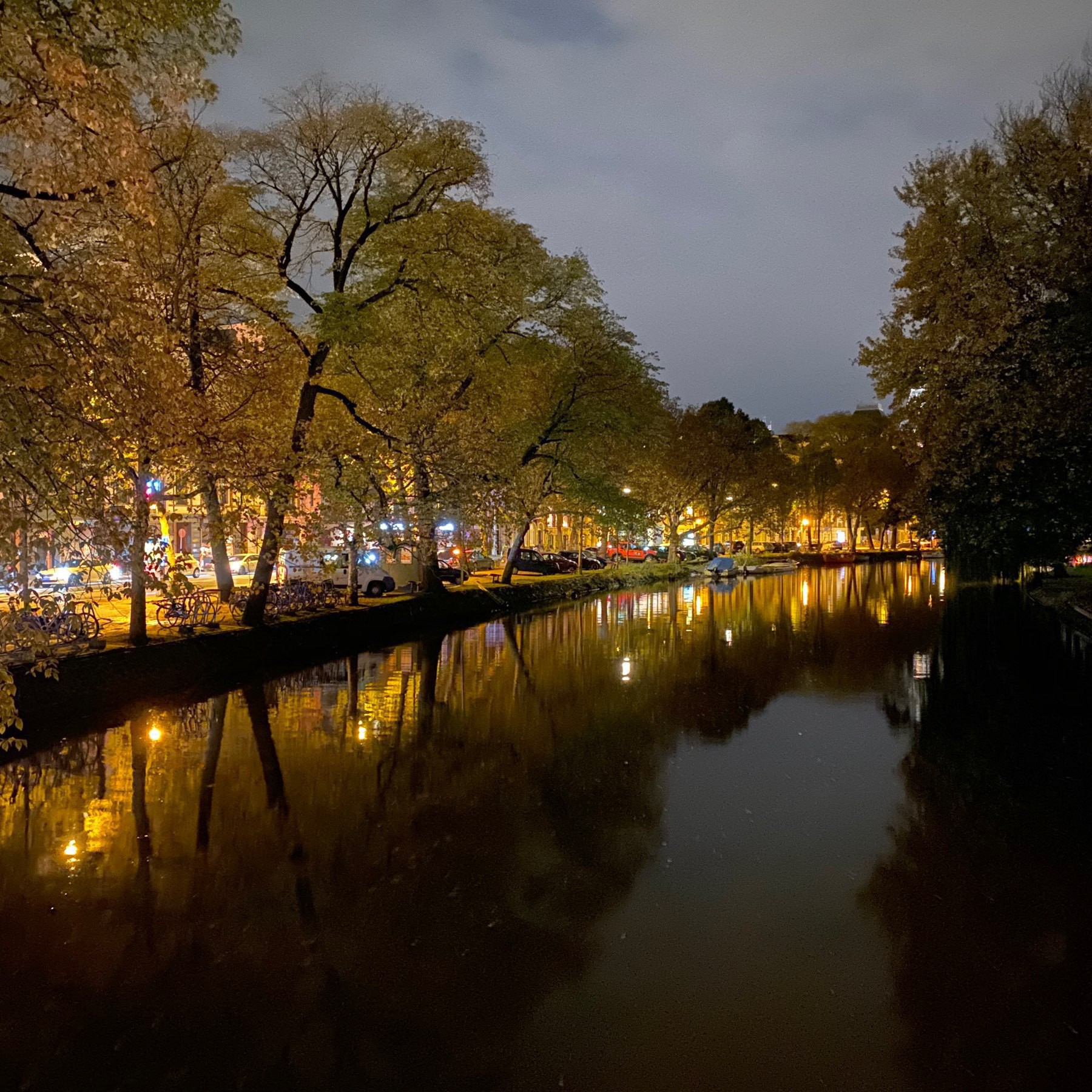 Night mode picture of an Amsterdam canal with tree canopy.