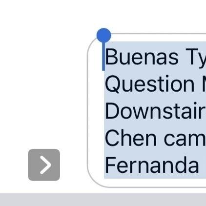 "screenshot of ios dictation reading ""Buenas Tyme White Fortnite Question Mark hay Walking de Downstairs va a Fernanda que Chen cama incluir a maestra Fernanda Kiara"""