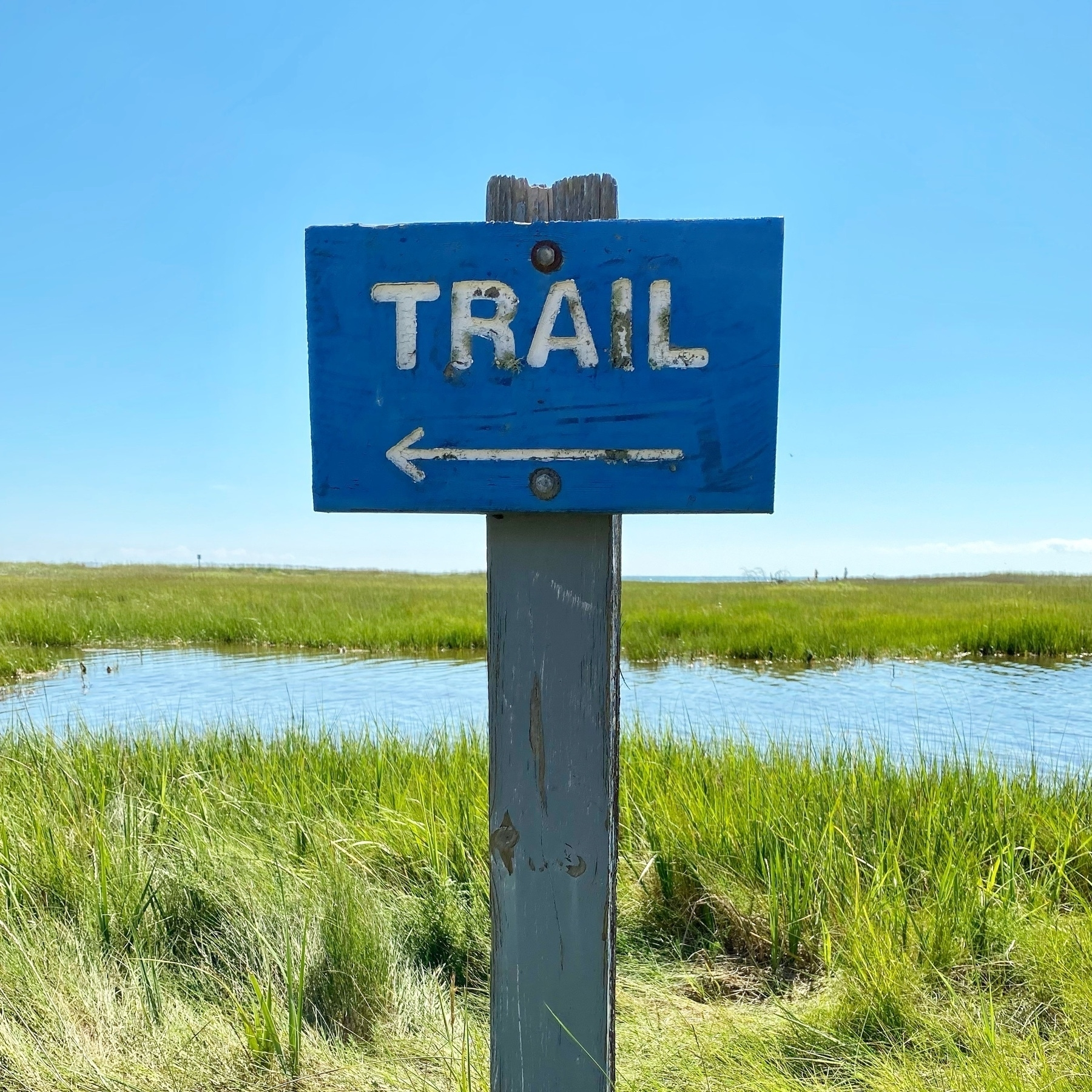 """blue sign with white text """"trail"""" against a backdrop of blue sky and beach marsh"""