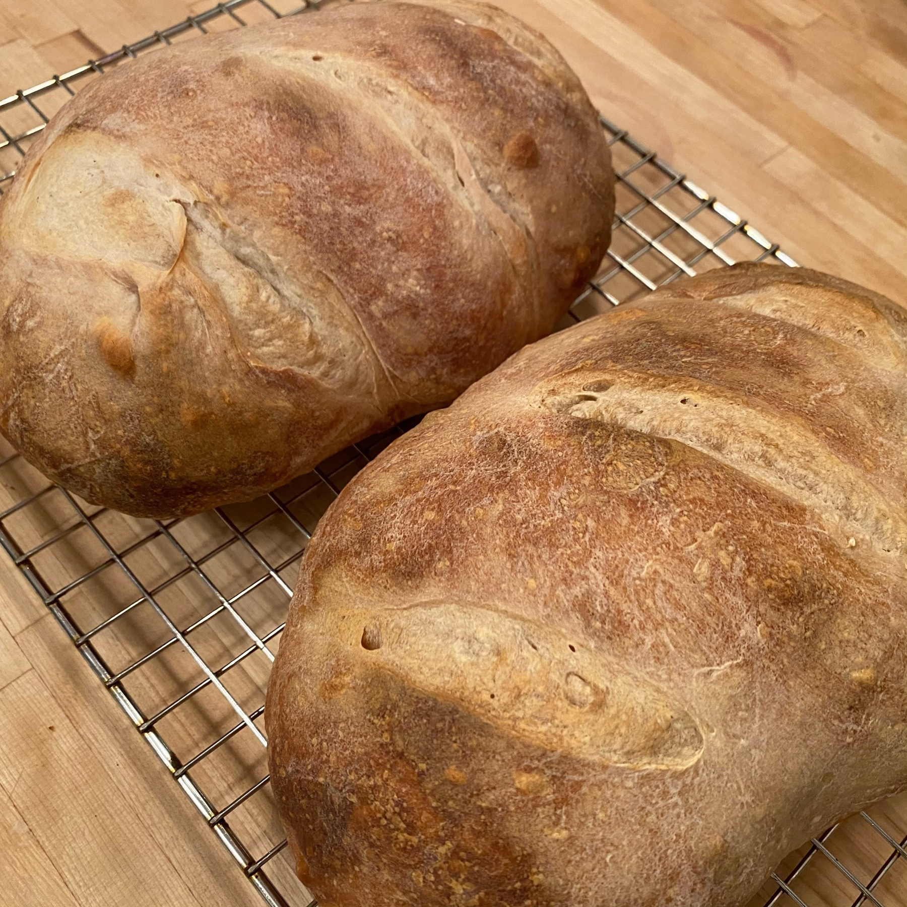 picture of two loaves of freshly baked bread